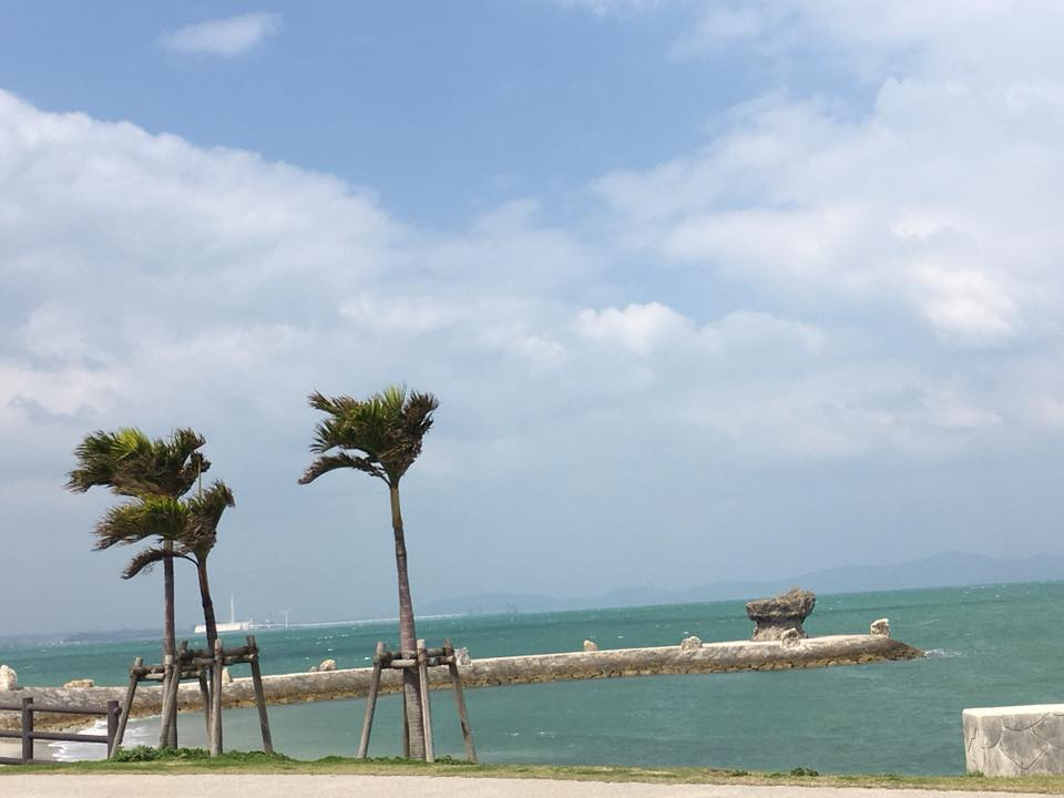 昨日から沖縄